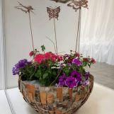 Flora cup Bratislava 2018